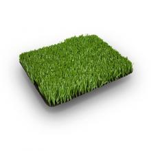 Искусственная трава Olympic